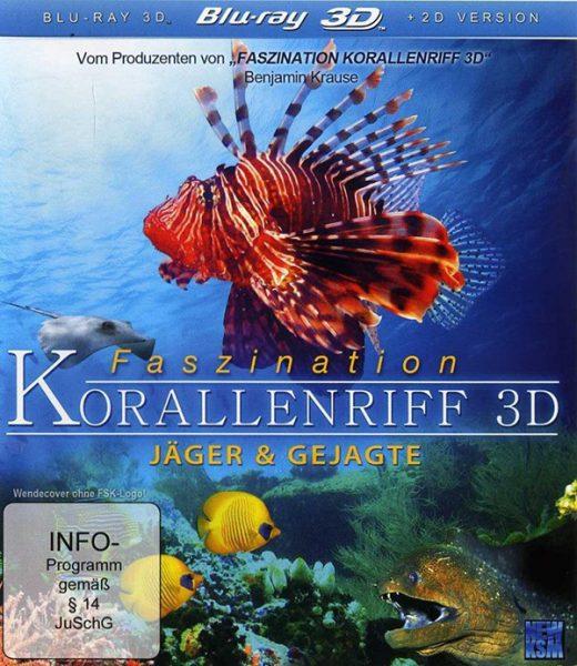 Faszination Korallenriff II